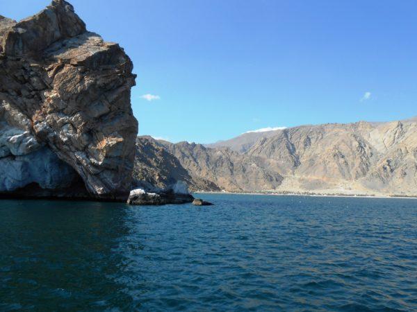 В Персидском заливе довольно высокий уровень солености воды
