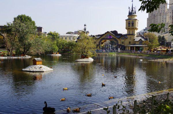 Пруд в Московском зоопарке