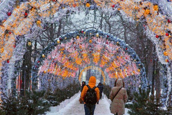 Сад Эрмитаж зимой