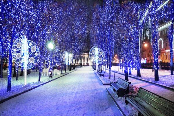 парк в Москве зимой