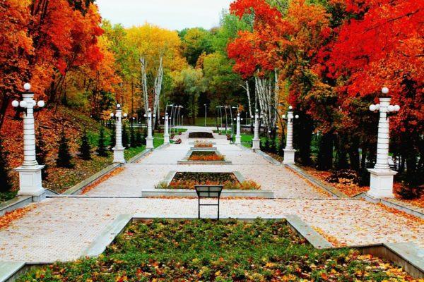 Воронежский центральный парк самый большой в городе