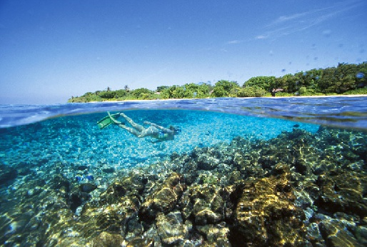 Несомненно, Баа – жемчужина Мальдив с роскошными пляжами, изумрудным морем и комфортабельными отелям
