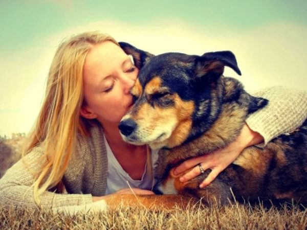 Для собаки перемена хозяина является большим стрессом, поэтому важно, чтобы нового хозяина искал человек, которому небезразлична судьба этого животного