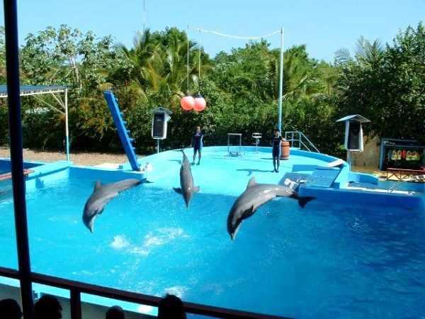 Парк Манати в Доминикане