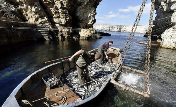 Рыбалка Тарханкут