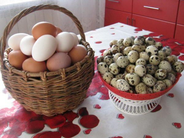 Куриное и перепелиное яйцо
