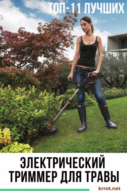 elektricheskij-trimmer-dlya-travy-434x650-8838555